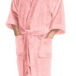 William Lane Craig: The Bathrobe